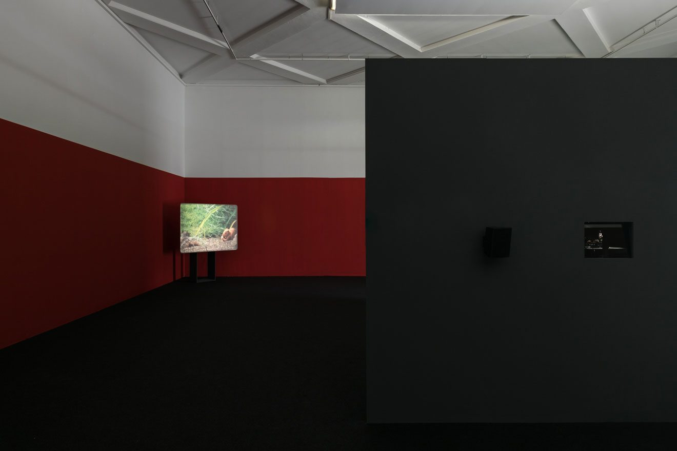 W©-Gianluca-Di-Ioia---La-Triennale-11